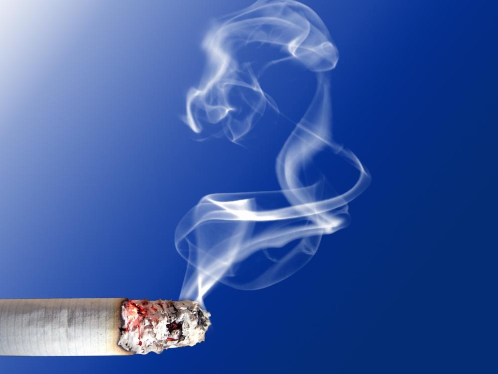 El tabaco (I) (2/4)