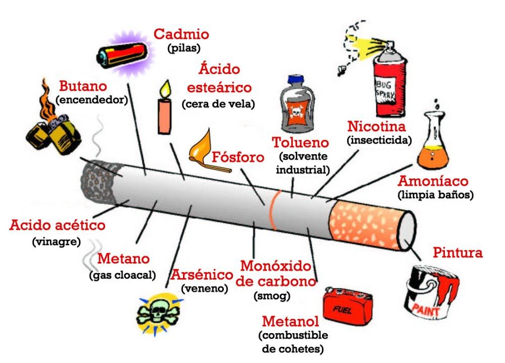 El tabaco (I) (4/4)