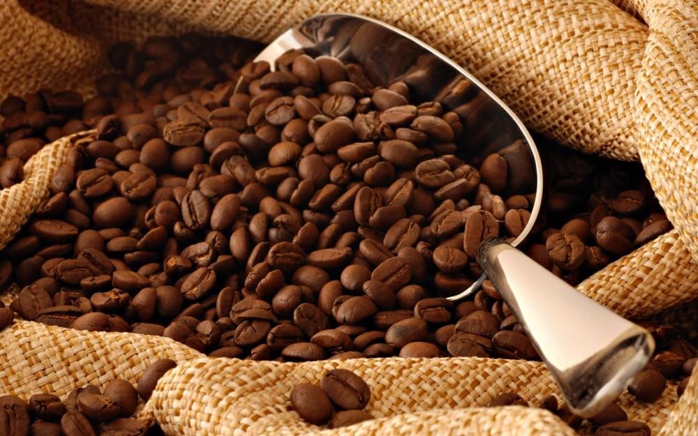 Todo sobre el Café y el Cacao (2/5)